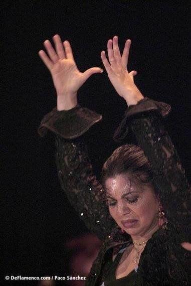 O flamenco tem a