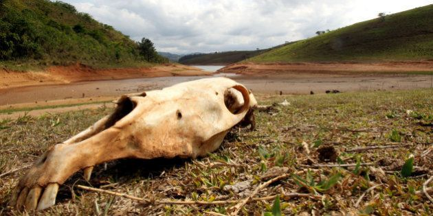 Crise da água em SP: Presidente da ANA e procuradora reclamam do governo, da Sabesp e negam que R$ 3,5...