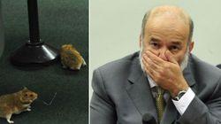 Depois de ratos, CPI da Petrobras tem bate-boca entre PT e