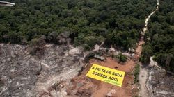 Onde a falta de água no Brasil começa: Greenpeace alerta para desmatamento em