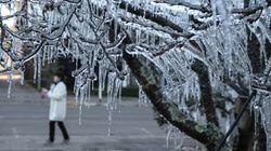 FOTOS: Santa Catarina congela com menos 8,3º