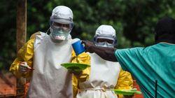 Médicos sem Fronteiras sobre Ebola: