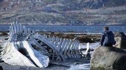 5 motivos para você assistir a 'Leviatã', o filme que está colocando a Rússia de cabeça para