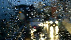 Chove,