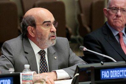 Brasil ganha prêmio de agência das Nações Unidas por combate à