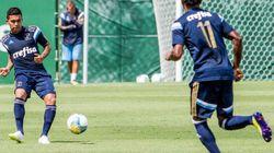 5 motivos para a torcida do Palmeiras (ainda) não se