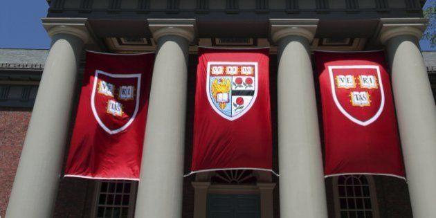 Harvard, Stanford e outras universidades renomadas oferecem 8 cursos online e