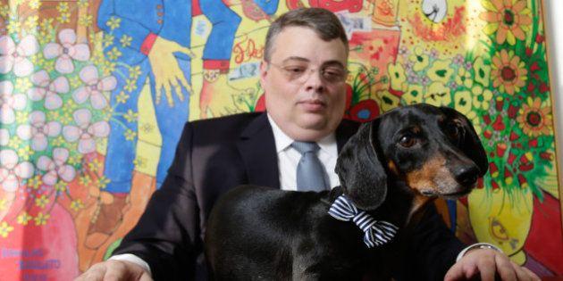 Após separação, dono de cão salsicha vai ao STJ e ganha guarda do