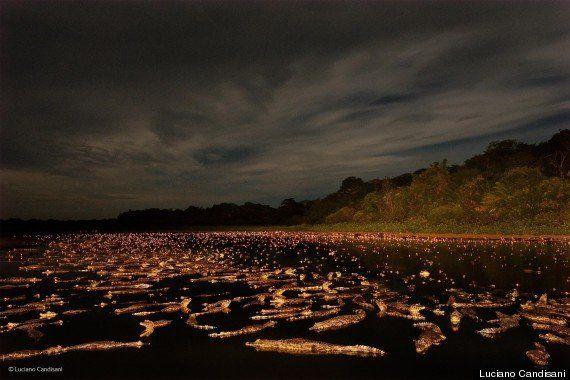 Brasileiro Luciano Candisani é finalista em principal prêmio de fotografia da