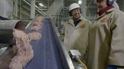 Mc Donald's FINALMENTE revela como são feitos os Chicken