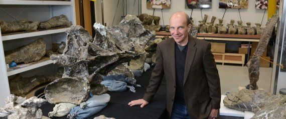 Paleontólogos descobrem dinossauro gigante na Patagônia