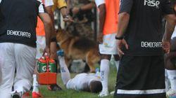 Jogador escapa de rivais, mas não de cachorro no Campeonato