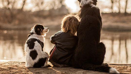 Estas fotos provam que o amor entre crianças e cachorros é