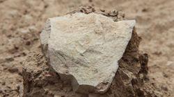 Nossos ancestrais usavam ferramentas de pedra muuuuito antes do que