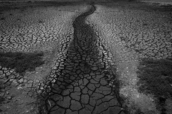 Quando a água é moeda: Conheça as empresas que quanto mais água consomem, menos pagam a