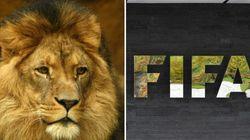 Receita Federal diz que investiga fraudes no futebol desde