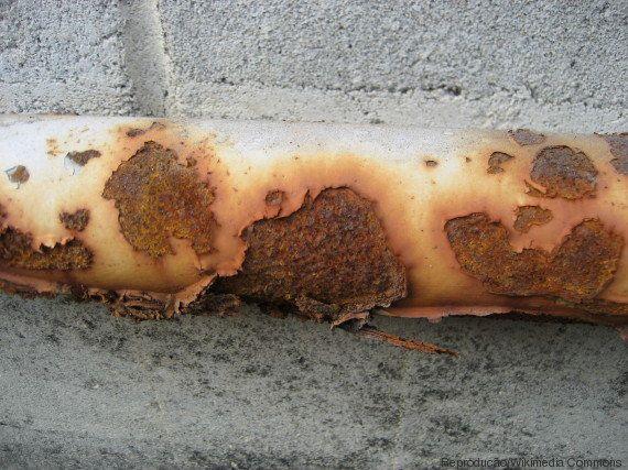 Lava Jato: Entenda os nomes das fases da operação deflagrada pela Polícia