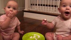 ASSISTA: Gêmeas encontram pacote de marshmallow e dividem entre