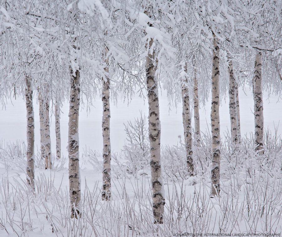 Veja as melhores imagens do concurso internacional de fotografia de paisagem