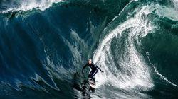 Lembra do surfista que escapou do tubarão? Ele voltou ao mar e deu tudo