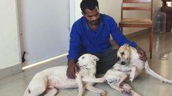 Este indiano juntou dinheiro por 10 anos para comprar ambulância e resgatar