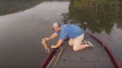 ASSISTA: Pescadores salvam gatinhos que estavam perdidos no meio de