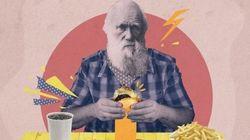 8 problemas modernos que a evolução da espécie ajuda a
