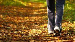 Quantos passos você deveria realmente andar por