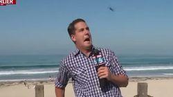 ASSISTA: Repórter toma susto ao vivo após ser atingido por inseto