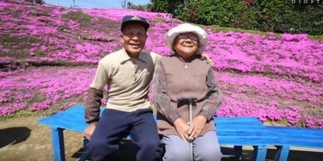 Velhinho japonês passa 2 anos plantando flores para a esposa