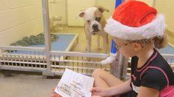 FOFO! Crianças leem para cachorrinhos