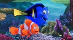 4 teorias de 'Procurando Nemo' que vão te deixar na expectativa para 'Procurando