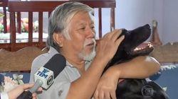 ASSISTA: Após 'vigília', cão reencontra dono que estava internado em hospital de