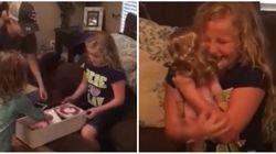 Esta garotinha recebeu uma boneca com uma prótese e este foi o seu MELHOR