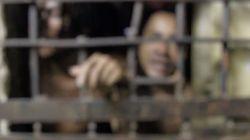ESTUDO: Palco de atrocidades, Pedrinhas (MA) segue superlotado e com política de