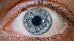 Estudo relaciona olhos claros a propensão ao