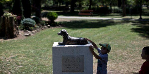 Cão que salvou garota de ataque é homenageado com estátua na