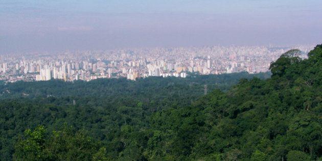 Projeto que concede 25 parques à iniciativa privada em São Paulo é
