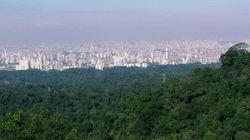 Raio privatizador: Aprovado o projeto que privatiza 25 parques em São