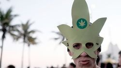 Chile dá primeiro passo para descriminalizar cultivo de