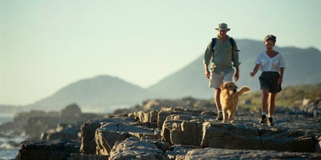 Couple walking on rocky beach with dog