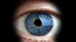 Cuidado com o projeto de lei que ataca sua privacidade e a liberdade de