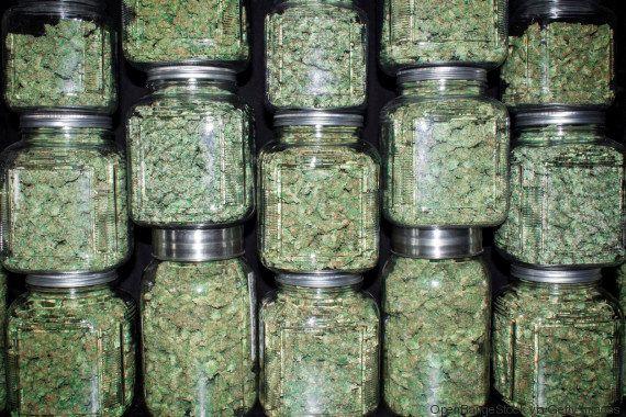 Agora vai? STF deve voltar a julgar descriminalização das drogas ainda neste