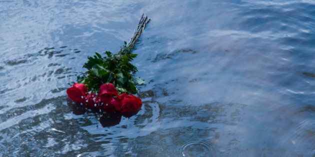 red roses tossed in shallow