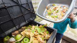 Em vez de jogarem comida no lixo, os supermercados franceses vão doar os