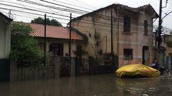 Caos e tragédia em SP: Chuvas deixam ao menos 15 mortos e 13