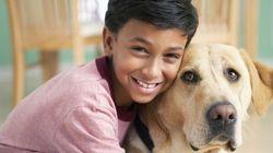 Ter um cachorro diminui estresse e ansiedade em