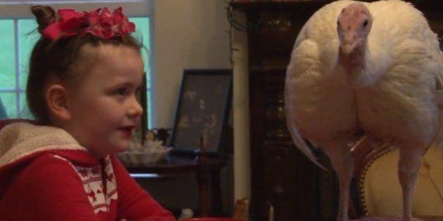 Menina vegetariana de 6 anos salva um peru de virar ceia de