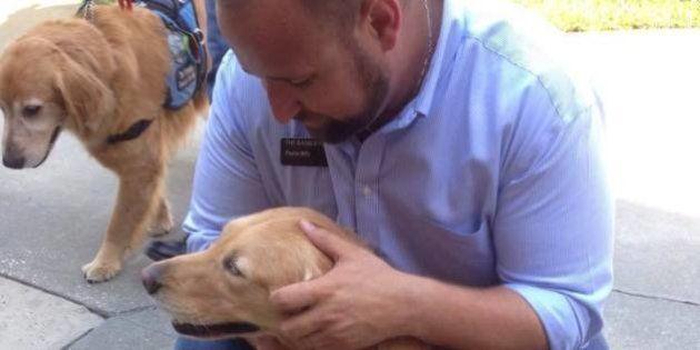 Cães treinados oferecem carinho a sobreviventes e familiares de vítimas do massacre em