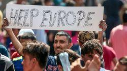 Refugiados desafiam estereótipo e encontram bons empregos na